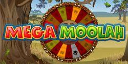 Glücklicher Spieler startet mit Gewinn von 6 Millionen Euro bei Mega Moolah ins Neue Jahr