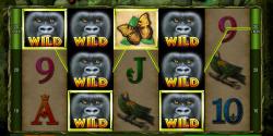 King of the Jungle von Bally Wulff